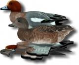 European Wigeon Decoys in Box of Six (3 Drake & 3 Hen)