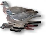 Wood Pigeon Decoys in Box of Six (3 Cock & 3 Hen)