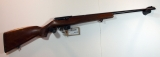 .22LR Semi-Automatic Rimfire Rifle
